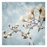 Tree Of White Flowers Fine Art Print