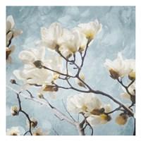 Tree Of White Flowers Mate Fine Art Print