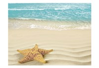 Beach Star Fine Art Print