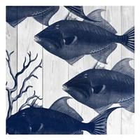 Fishes 2 Framed Print