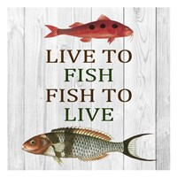 Live To Fish Fine Art Print