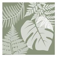 Green Garden 2 Fine Art Print
