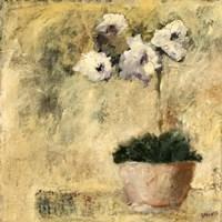 Orchid Textures III Fine Art Print