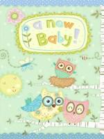 Baby Owl II Fine Art Print