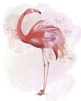 Fluffy Flamingo 3 Framed Print