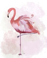 Fluffy Flamingo 4 Fine Art Print