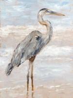 Beach Heron I Fine Art Print