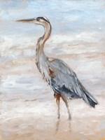 Beach Heron II Fine Art Print