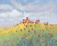 Summer Breeze Meadow II Framed Print