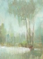 Mist in the Glen II Framed Print