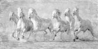 Water Horses V Fine Art Print
