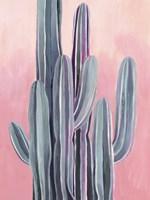Desert Dawn II Framed Print