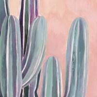 Desert Dawn III Framed Print