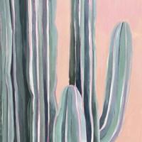 Desert Dawn V Framed Print