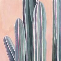 Desert Dawn VI Framed Print