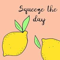 Lemon Squeeze I Fine Art Print