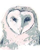 Funky Owl Portrait I Framed Print
