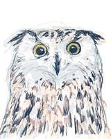 Funky Owl Portrait II Framed Print