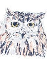 Funky Owl Portrait III Framed Print