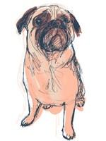 Dog Portrait--Dave Fine Art Print