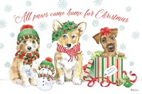 Holiday Paws I Fine Art Print