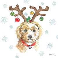 Holiday Paws VI Framed Print