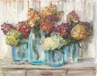 Hydrangeas in Glass Jars White Wood Fine Art Print