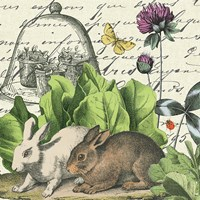 Garden Rabbit II Fine Art Print