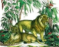 Jungle Flair VI Fine Art Print