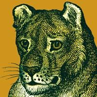 Jungle Flair IV Fine Art Print