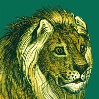 Jungle Flair III Fine Art Print