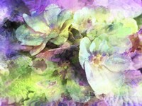 Pink and Green Floral Abstract Fine Art Print