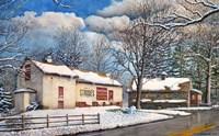 Country Fresh Fine Art Print