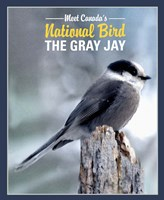 Gray Jay Canada's National Bird Fine Art Print
