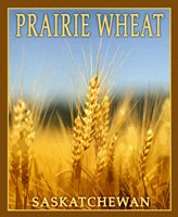 Praire Wheat, Fine Art Print