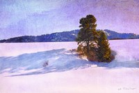 Snow Shadows Fine Art Print