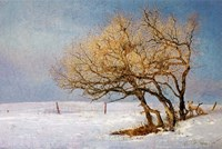 Fox And Winter Oak Fine Art Print