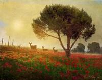 Trees Poppies Deer Fine Art Print