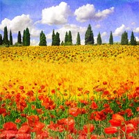 Lombardy Fine Art Print