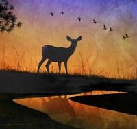 Deer Silhouette Framed Print