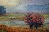 Horses And Lone Oak Fine Art Print
