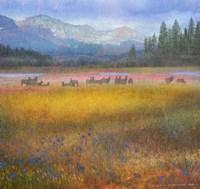 Flowered Meadow Elk Fine Art Print