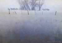 Fence Line Elk Fine Art Print