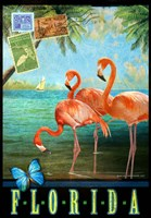 Florida Flamingoes Fine Art Print