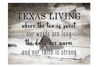 Texas Living Fine Art Print