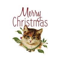 Cat Christmas 4 Fine Art Print