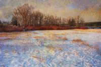Willows Frozen Cottonwood Fine Art Print