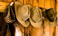 Old Hats Gun On The Wall Payson Arizona Fine Art Print
