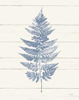 Fern Print I Blue Crop Fine Art Print