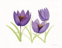 Easter Blessing Flowers VII Fine Art Print